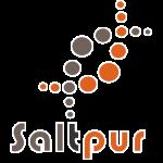 Saltpur - logo - Stroke