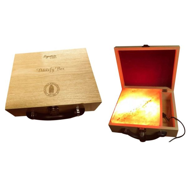 Himalayan Salt Detoxify Lamp with Box Signature Series Medium 8 x 8 x 2 Inch - Saltpur Himalayan Salts